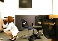 Admirable office lady is giving nice blowjob on her knees
