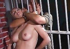 Stud fucks a slut in a jail cell